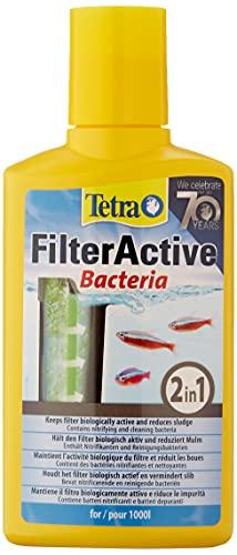 TETRA - FilterActive - Préserve la Propreté du Filtre d'Aquarium - Contient des Bactéries Vivantes - 250 ml