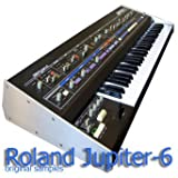 Immagine 1 for roland jupiter 8 the