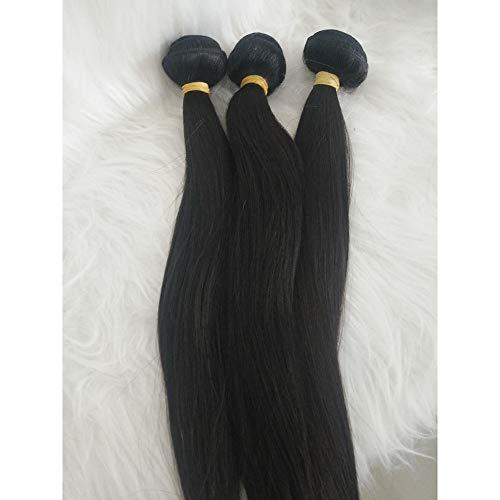 Tresses de cheveux humains raides tissés 3 pièces Noir 40,6 cm 40,6 cm 40,6 cm Extensions de cheveux brésiliens