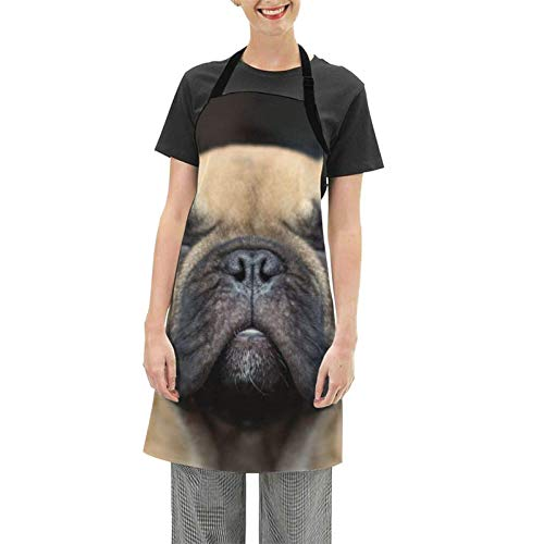 French Bulldog Apron Dog Adjustable Waterdrop Resistant Bib Cooking Kitchen Baking Grill Crafting Drawing Outdoors BBQ for Women Men Chef