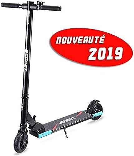 CRZ by Vg Bikes Trougetinette Electrique rue 4AH 150W Pliable Ecran LCD Ultra légère