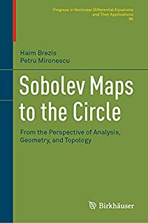Sobolev Maps to the Circle: From the Perspective of Analysis, Geometry, and Topology