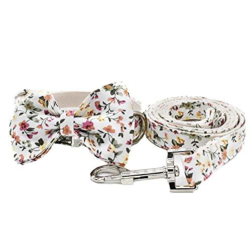 MARMODAY 1 Unidades de collar de cachorro para perros pequeños, collares básicos, cuello ajustable, tela de metal fuerte y duradero, rápido remolque