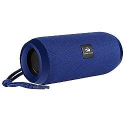 Zebronics Zeb-Action Portable BT Speaker with TWS Function, USB,mSD, AUX, FM, Mic & Fabric Finish,CHINA OWL CO LTD,Zeb-Action(blue)