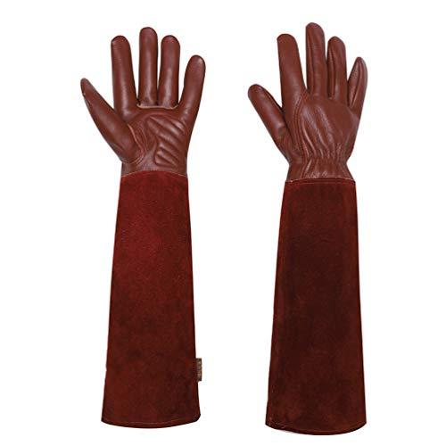 Gartenhandschuhe Für Damen und Herren - Isilila Rosen Leder Langen Rindsleder Handschuhe dornensichere Thorn Proof Atmungsaktiv & Haltbarkeit Gauntlet Handschuhe (L, Braun1)
