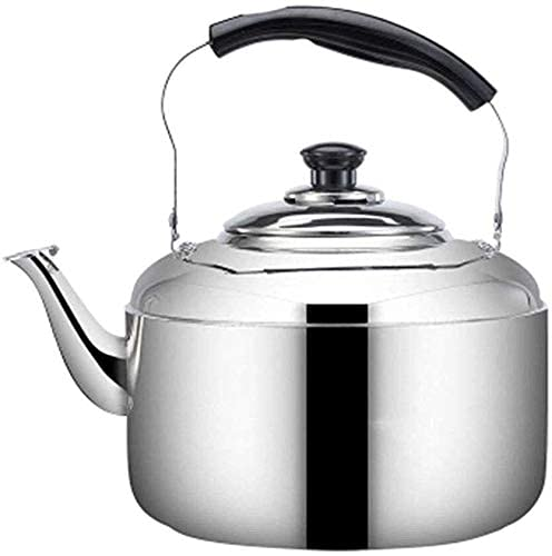 Creativity Silver Kettle Tea Kettle Stainless Steel Stovetop Teapot Whistling Kettle Surgical Stainless Steel Teapot for All Stovetops (Size : 10L)