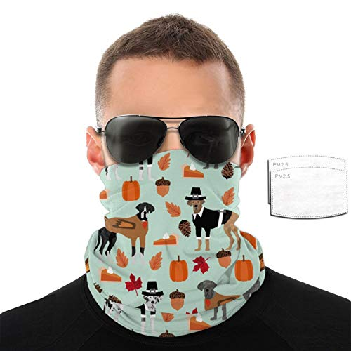 Srtgsyhrt Great Dane Breathable Variety Face Towel Filters Head Scarf Mouth Cover Anti Dust Neck Gaiter Outdoor with 2/6/10 Filter