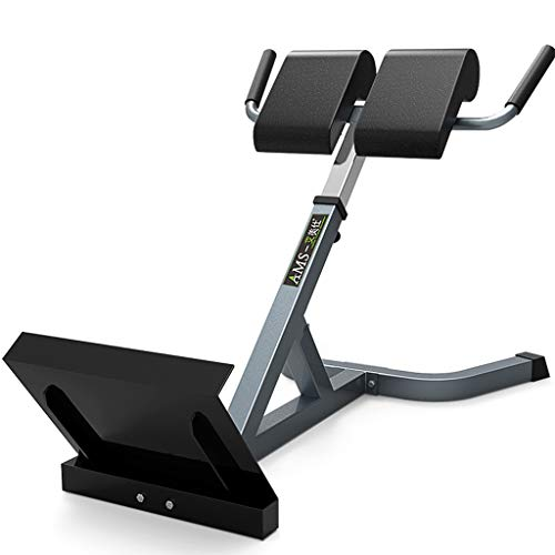 Fantastic Prices! DLT X Hyper Strength Roman Chair, Abs Back Extension Exercise Gym Bench, Fitness E...