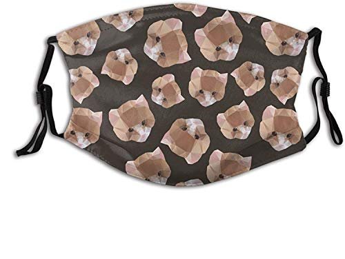 Mask with 2 Filters Washable Reusable Adjustable Cat Face Mask-Cat from a Geometrical Pattern-1 PCS