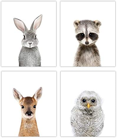 Designs by Maria Inc Woodland Baby Animals Nursery Decor Art Set of 4 Unframed Wall Prints 8x10 product image