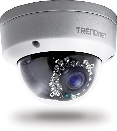 T Net Old Version Indoor/Outdoor Dome Style IP Camera