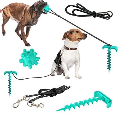 ZLDM Hundespielzeug Im Freien, Tragbare Zurrgurte Für Haustiere, Hundeleine, Geeignet Für Haustiere, Die Auf Dem Rasen Oder Am Strand Spielen.