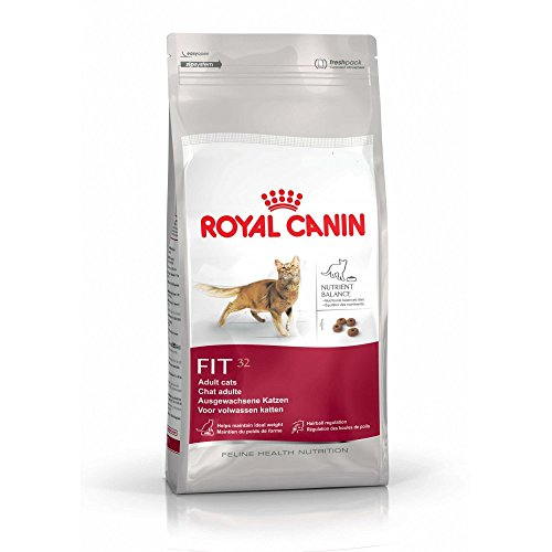 Royal Canin Fit 32 Dry Mix 400g (Pack of 4)
