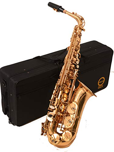 Herche Superior Alto Saxophone   Professional Grade Musical Instruments for All Levels   High F# Key   Complete Set w/Backpack Carrying Case,...