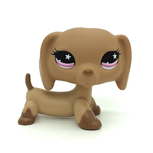Top 13 lps dachshund under 15 dollars for 2021