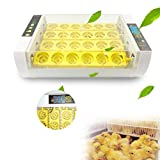 Hatching Eggs Incubator, DHL 5-10 Days, Fully Automatic Egg Incubator, 24 Eggs Poultry
