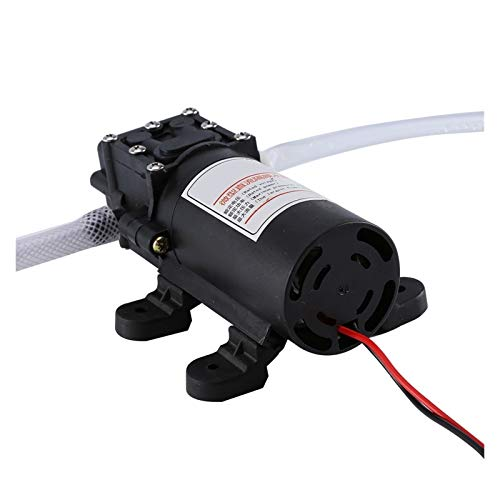 Fangaichen Adecuado para el Coche Profesional eléctrico 12V Mini Bomba de Aceite Diesel Motor de Combustible Extractor de Transferencia de autoservicio para intercambiar Coche