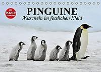 Pinguine - Watscheln im festlichen Kleid (Tischkalender 2022 DIN A5 quer): Koenigspinguine in ihrem natuerlichen Lebensraum (Geburtstagskalender, 14 Seiten )