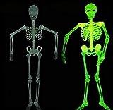 Halloween 5 Ft Skeleton Luminous Glow-in-The-Dark Skeleton for Halloween Party Bar Wall Sticker Decorations Outdoor Yard Garden Hanging Ornaments Props (5ft Skeleton)