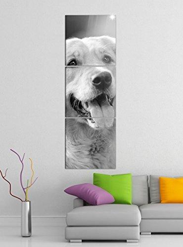 Leinwandbild 3tlg Hunde Golden Retriever Hund Zunge schwarz weiß Bilder Druck auf Leinwand Vertikal Bild Kunstdruck mehrteilig Holz 9YA5118, Vertikal Größe:Gesamt 30x90cm