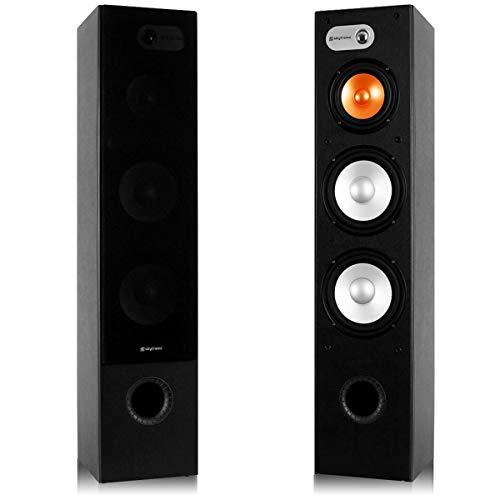 professionnel comparateur Paire d'enceintes 3 voies Fenton SHFT655B – maximum.  500 W, enceinte Hi-Fi de haute qualité,… choix