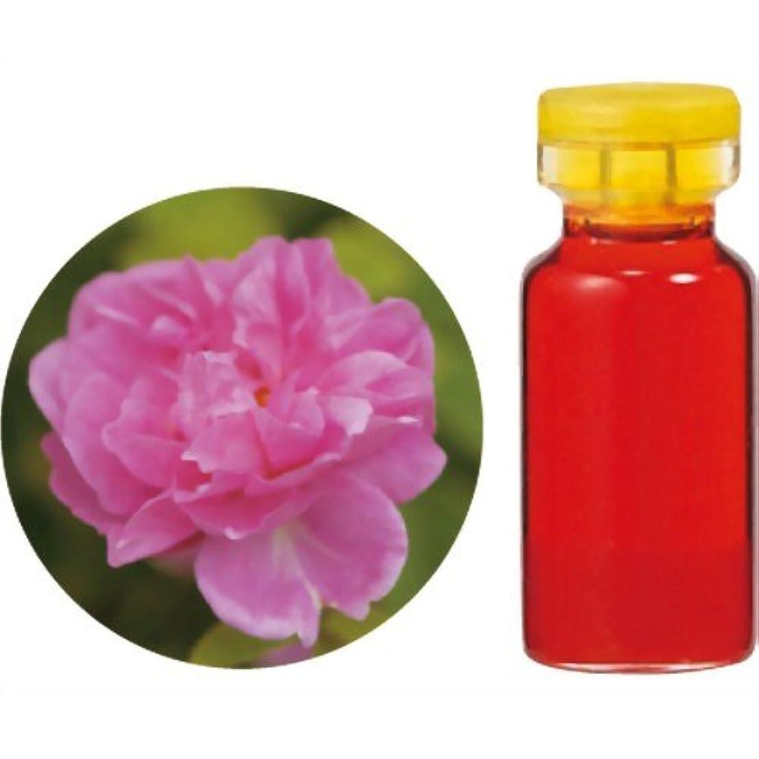 代数的懸念献身生活の木 Herbal Life 花精油 ダマスクローズAbs.(モロッコ産) 3ml