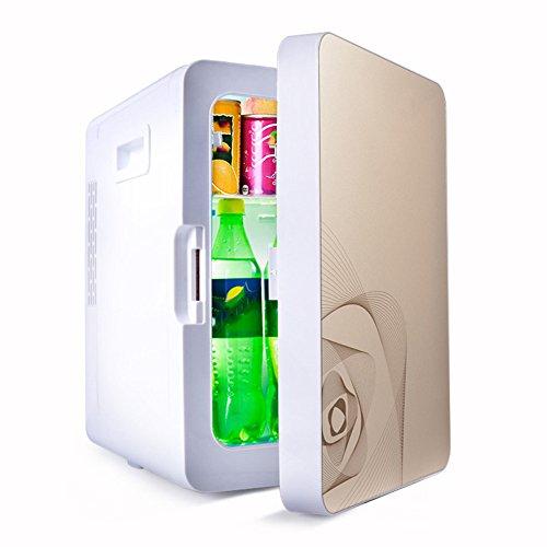 LVZAIXI Koelkast voor auto, 20 liter, mini-koelkast voor auto, dubbele kast voor verwarming en koeling 220 V AC/12 V DC
