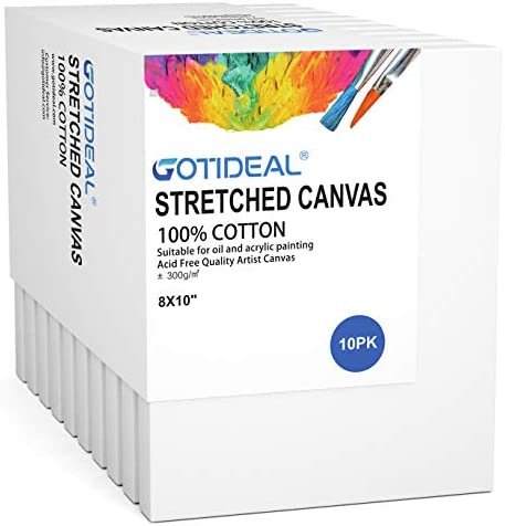 GOTIDEAL Stretched Canvas 8x10 Inch Set of 10 Primed White 100 Cotton Artist Canvas Boards for product image