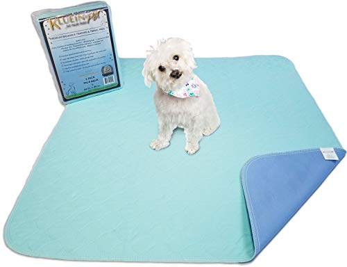 Kluein Pet Washable Pee Pads for Dogs, 2 Pack L 34x36, Aqua, Reusable Puppy Pads, Fast Absorbing Wee Mat; for Playpen, Housebreaking, Indoor Potty Training, Whelping, Incontinence, Travel