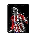 Cartel de metal vintage con texto en inglés 'Football Superstar Fernando Torres' para decoración de pared, estilo retro, 30 x 40 cm