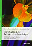 Traumabedingte Dissoziation bewältigen: Ein Skills-Training für Klienten und ihre Therapeuten. Mit CD - Suzette Boon