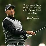Euphoria Eshop Tiger Woods Populäres HD-Poster, 30,5 x