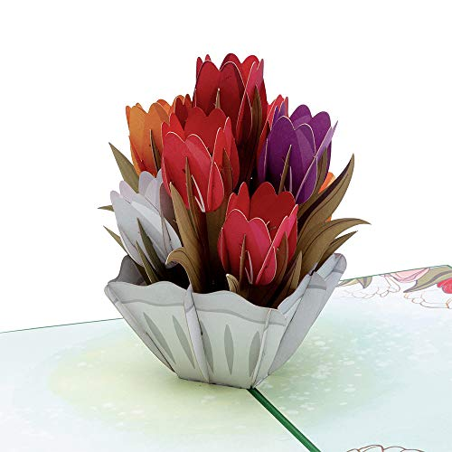 Paper Love Tulips Pop Up Card, 3D Popup Greeting Cards, for Mothers Day, Fathers Day, Spring, Birthday, Wedding, Anniversary, Thank You, Get Well, All Occasion | 5' x 7'