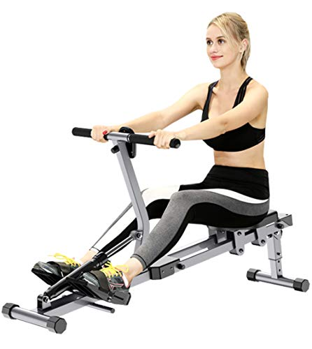 Life HS Sunny Health & Fitness Compact Folding Magnetic Rudergerät mit LCD-Display, 246.5 Lbs Max-Synergy Power Motion