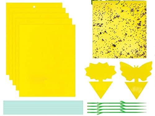 manfa Trampas de Insectos de Doble Cara,54Piezas Trampas Pegajosas Papeles Pegajosos Amarillos Trampas de Moscas para Moscas, Pulgones, Mineros de Hojas, Polillas,15x20cm (50PCS)