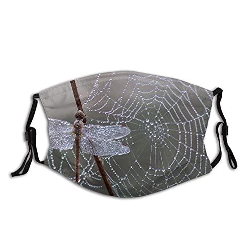 Dragonfly Spider Web After Rain Face M-A-S-K con 2 filtri, riutilizzabile e lavabile, unisex