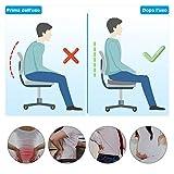 Zoom IMG-1 levesolls cuscino sedia ufficio coccige