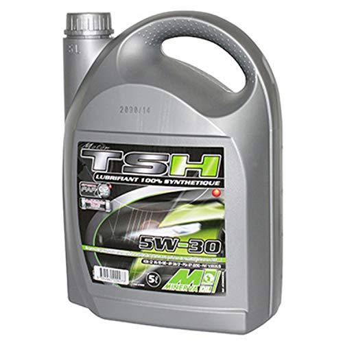 MINERVA OIL 4-takt motorolie MINERVA Auto synthese TSH 5W30 (100% synthetisch voor FAP diesel en benzinemotoren) (5 l)