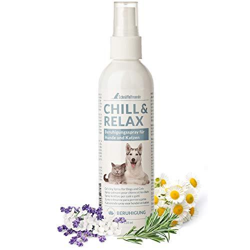 Schnüffelfreunde Chill & Relax Beruhigungsspray für Hunde und Katzen I Spray zur Beruhigung für den Hund und die Katze - Duft mit Rosmarin und Lavendel - 120ml