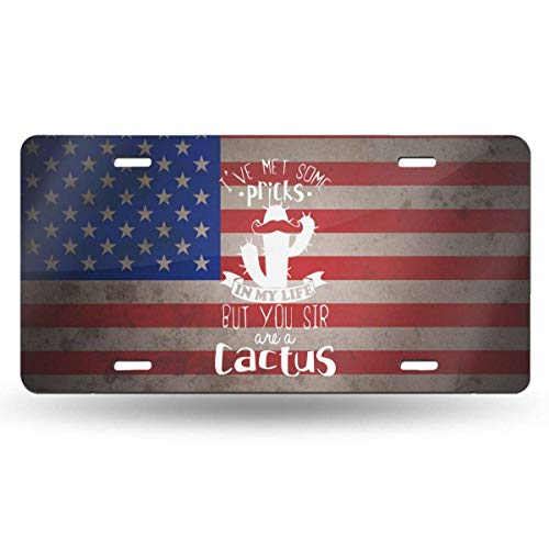 AOOEDM License Plate I've Met Some Pricks Decorative Car Front License Plate Tag, Aluminum License Plate, 6 X 12 Inch (4 Holes)