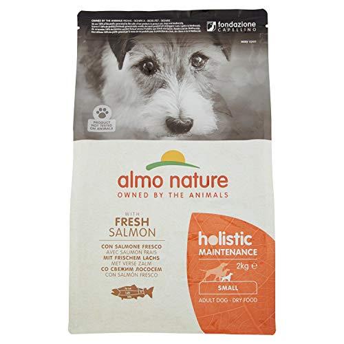 Almo Nature Pienso para Perros Adultos Holistic Dog Dry Salmón (2 kg). Alimento para Perros Seco Alto en Proteínas para Razas Pequeñas con Sabor a Salmón Natural. Comida Seca de Fácil Digestión. ✅