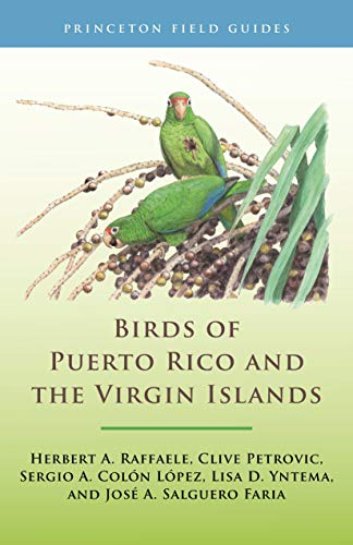 Compare Textbook Prices for Birds of Puerto Rico and the Virgin Islands: Fully Revised and Updated Third Edition Princeton Field Guides, 146 Revised Edition ISBN 9780691211671 by Raffaele, Birds of the West Indies Herbert A.,Petrovic, Clive,López, Sergio A. Colón,Yntema, Lisa D.,Faria, José A. Salguero