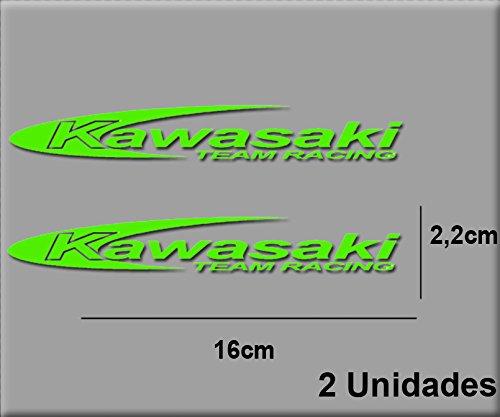 Imagen de Adhesivo Kawasaki Ecoshirt por menos de 4 euros.