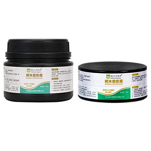 xianhuabing Crema Curativa para Plantas Crema Curativa para Heridas Cortadas En Árboles para Injertos De Plantas De Jardín Y Tratamiento De Heridas (50g / 500g)