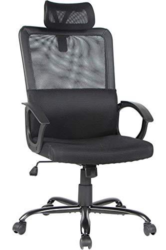 Smugdesk Ergonomic Office Chair...