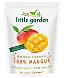 Little Garden - Snack de fruits craquants 100% Mangue sans sucres ajoutés- Lot de 6 sache...