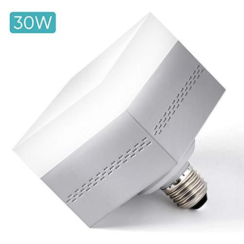 LED-lamp E27/30W koudwit garagevamer gloeilampen (150-200W gelijkaardig), plafondlamp LED plafondlamp 4500LM 6500 K voor kelder garage fabriek LED-lamp binnen buiten [energieklasse A ]