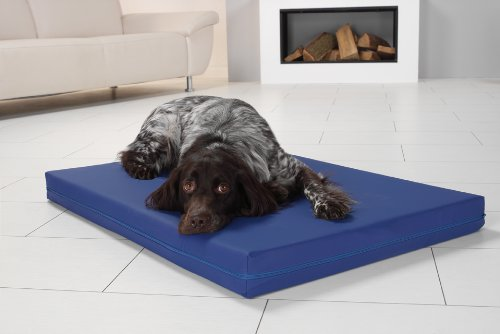 Medizinisches Hundebett PULMACELL® safe, 50x70x8 cm, royalblau