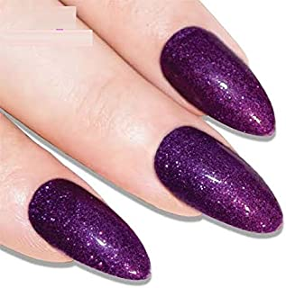 Premium Glitter & Zari Polish Sexy Nails Pack of 12 nails with Glue (All Sizes Included)