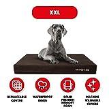 Le Chien de lit, Premium orthopédique étanche mousse à mémoire de forme pour chien